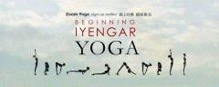 線上共學:初級瑜伽班